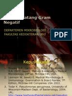 Bakteri Batang Gram Negatif (Enterobact)