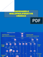 Sindroamele Mieloproliferative Cronice
