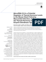 Microrna 214 is a Potential Regulator of Thyroid Hormone Levels In the Mouse Heart Following Myocardial Infarction, By Targeting the Thyroid-hormone-Inactivating Enzyme Deiodinase Type III
