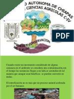 conservacion-140507195352-phpapp02