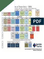 Estructura de Materias Por Año y Sistema de Pre-Requisitos