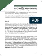 Parámetros de población y daño de Polyphagotarsonemus latus (Acari