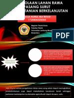 Pengelolaan Lahan Rawa Pasang Surut.pptx