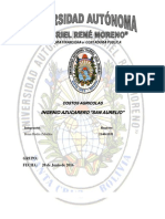 Informe Completo de Costos Agricolas.docx