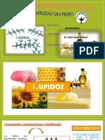 lipidos_1-exposicion