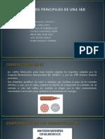 Elementos-Principales-SED.pdf