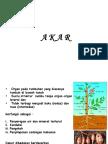 15-akar.pdf