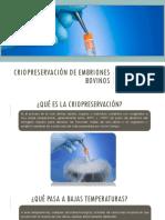 Criopreservación de embriones bovinos.pptx