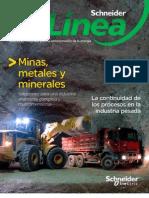 Revista en Linea Enero 2009