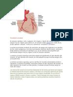Fisiopatologia IAM.docx