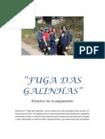 Relatório São Domingos
