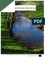 Informe de Hidro -Rio Shupishiña