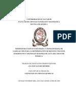 cromatografia para determinar btex.pdf