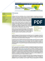 Misión Multidimensional Integrada de Estabilización de Las Naciones Unidas en La República Centroafricana (MINUSCA)