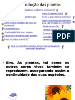 A Reprodução Das Plantas
