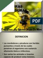 Picaduras-Mordeduras