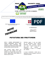 Potatura_fruttiferi