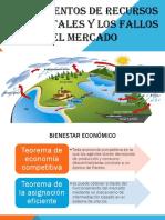 Fallos Del Mercado 4