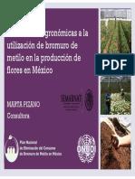 1.3 Alternativas Agronomicas Al Bromuro en Flores (Pizano)