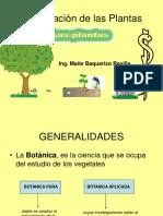 plantasss.pdf
