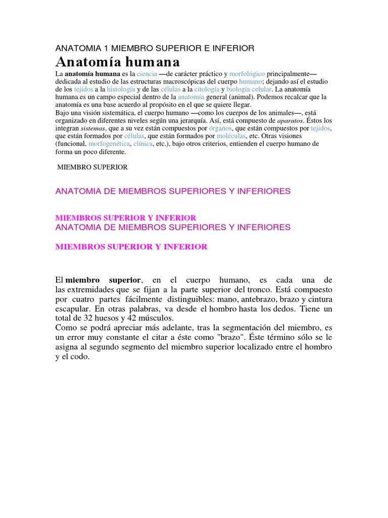 Anatomia 1 Miembro Superior e Inferior