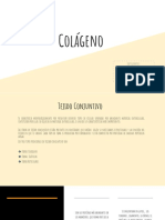 Colágeno (1)
