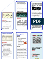 TRIPTICO anchoveta