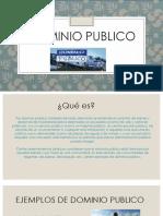 Dominio Publico (1)