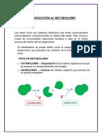 BIOLOGIA METABOLISMO
