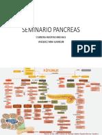 Mapa Pancreasddddeewsssss