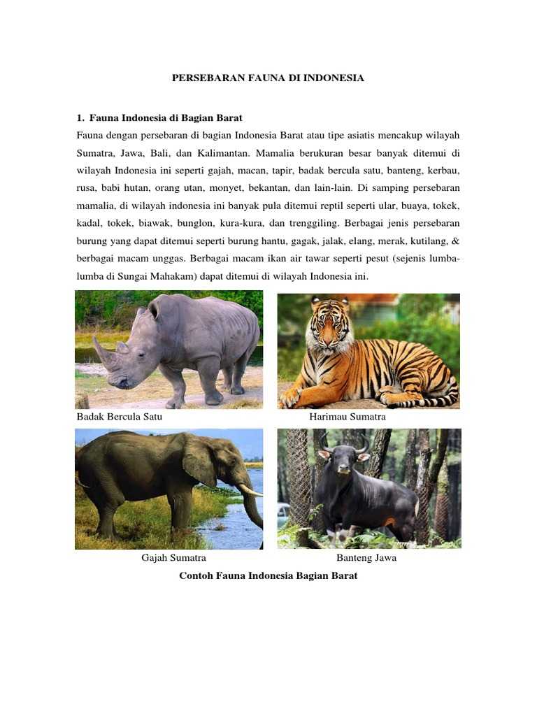 100 Gambar Flora Dan Fauna Di Indonesia Bagian Barat Gambar Pixabay