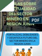 Fortalezas , Debilidades y Miras Al Futuro de La Mineria