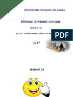 14 PERITAJESEMANA14.pptx