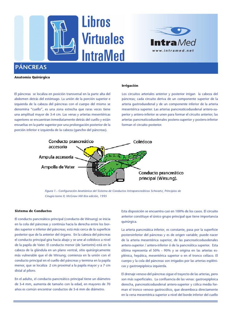 06 - Páncreas.pdf