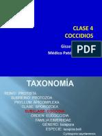Clase IV Coccidios