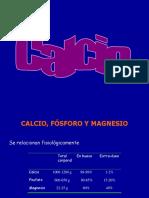 CALCIO,FOSFOROYMAGNESIO_11081.pdf
