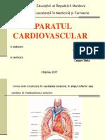 Anatomie Stud. 3