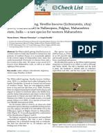 White-tailed Lapwing Palghar Maharashtra.pdf