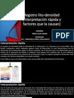 Geologia Del Subsuelo-Densidad