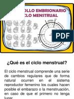 Ciclo Menstrual y Desarrollo Embrionario