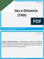 ManualUsuario TrámitesA Distancia - NIC.pdf
