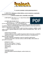 dansulmodern_proiect_activitateextracurriculara.doc