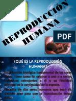 REPRODUCCIÓN-HUMANA-CTA.pptx