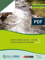 oferta hidrica de la microcuenca mollebamba apurimac.pdf