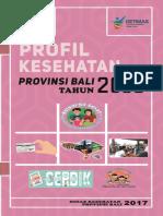 Profil Kesehatan Bali 2016