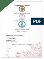 Reporte_de_caso Rueda Del Desarrollo