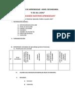 PROYECTO DE APRENDIZAJE –NIVEL SECUNDARIA (1).docx