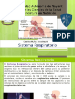 Presentacion Sistema Respiratorio