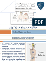 Presentacion Sistema Endocrino Morfofisiologia