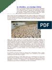 175-El Cambio Climático.doc